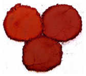 Bột màu oxit sắt đỏ tươi - Chịu nhiệt - Siêu mịn và nano Red bright iron oxide pigments - Heat-resistance- Ultrafine and nano